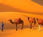 ARABIA SAUDITA PAESAGGI